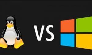 Web服务器,该选windows还是Linux?插图